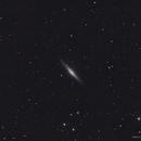 NGC 2683,                                Roberto Marinoni