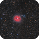 Cocoon Nebula Hyperstar,                                Elmiko