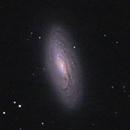 NGC 5005,                                lowenthalm