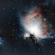 Orion nebula,                                floreone