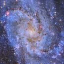 M33 The Triangulum Galaxy,                                Dustin and Georgi...