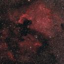 NGC 7000 - North America,                                grizli21