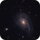 First light - NGC772 Alt/Az L-350 in a Bortle 8,                                Daniel Hightower