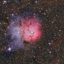 Trifid Nebula,                                Richard Muhlack