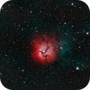 Trifid Nebula HOO,                                riot1013