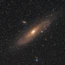Andromeda,                                Tim Lewandowsky