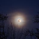 Super Pink Full Moon 20200328 01.5.1,                                Allan Alaoui