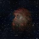 NGC 2175,                                Cesar