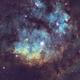 NGC7822 SHO,                                Mark Carter