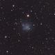 IC1613, Local Dwarf in Cetus,                                Kees Scherer