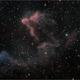 IC 59 and IC 63 - Reflection and Emission Nebulae,                                Randal Healey