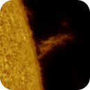 Solar Prominence, 1, HA, 03-02-2020,                                Martin (Marty) Wise