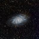 M33 (Wideview),                                Trevor Nicholls