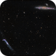 NGC4631 - Whale Galaxy and Companions,                                Roberto Botero
