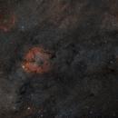IC1396 and Cocoon Nebula in Wide Field,                                Adam Skrzypek