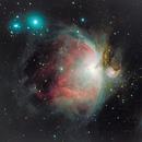 M42 - Orion Nebula,                                Thomas
