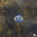 Crescent Nebula NGC 6888- Hubble Blend,                                Chris R White