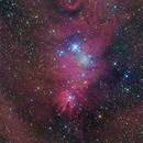 Christmas Tree Cluster and Cone Nebula (NGC2264),                                Ken-ichiro Tanaka