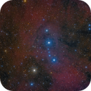 Inside the Head of The Hunter (Lambda Orionis Cluster Cr 69),                                Michael Feigenbaum