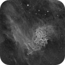 Flaming Star,                                whitenerj
