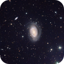 NGC4725 LRGB from DSW,                                jerryyyyy