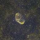 Crescent Nebula,                                wjf56