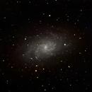 M33 - The Triangulum Galaxy Wide Field,                                Timothy Martin & Nic Patridge