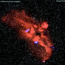 ngc2327 nebulosa gabbiano nel cane maggiore                        distanza 3.260   A.L.,                                Carlo Colombo