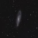 NGC 247,                                Gary Imm