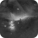 HorseHead Nebula,                                HoldGone