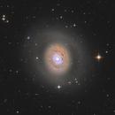 M94 Cat's Eye Galaxy,                                Jarrett Trezzo