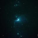 M42 Orion nebula,                                Dmitri Gostev