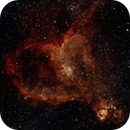 IC 1805 - Heart Nebula,                                Vipin Kamath