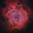 The Rosette Nebula, NGC2237,                                AstroCat