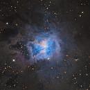The Iris Nebula,                                Mark