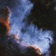 NGC 7000,                                Rhett Herring