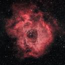 Rosette Nebula, NGC 2237,                                Nicholas Gialiris