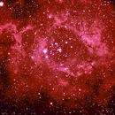 Rosette Nebula Second Image Set,                                Steve Lantz