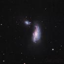 NGC4490, the Cocoon Galaxy,                                Niels V. Christensen