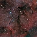 Elephant's Trunk Nebula,                                Shawn Harvey