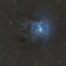 The Iris Nebula (NGC 7023),                                Josh Woodward
