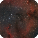 IC 1396,                                Andrea Bartoloni