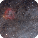 IC1396 and the Elephant's Trunk nebula,                                Csilla Tepliczky
