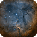 IC1396 Bicolor,                                Mikael Wahlberg