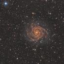 IC342 - The Hidden Galaxy,                                Phil Brewer