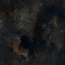 NGC7000 more lights, longer processing..,                                Ed Defesche