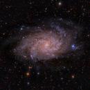 la galaxia del triángulo,                                Federico Margalef (Iko)