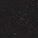 M41,                                Zach Coldebella