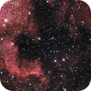 "NGC 7000 + ""Kleiner Orion"" (Leiter 9),                                norbertbuchta"