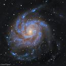 M 101 - Pinwheel Galaxy,                                AstroCarpets